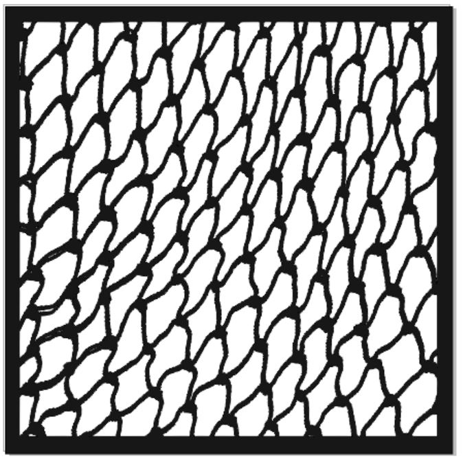 Fishing net 200 x 200  sold 3